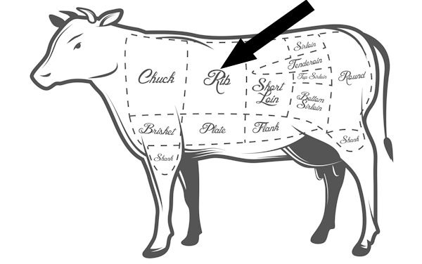 30 Cuts 30 Days Beef Ribs together with  further Deer Charts Different Cuts Their Uses likewise Best Value Steak Cuts as well Parts Of A Rabbit Meat Cuts. on best cuts of beef